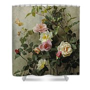 Roses On A Wall Shower Curtain
