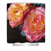 Roses On Dark Background Shower Curtain