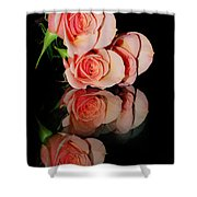 Roses On Glass Shower Curtain
