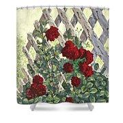 Roses On Lattice Shower Curtain