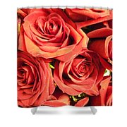 Roses On Your Wall Shower Curtain