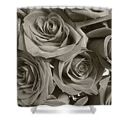 Roses On Your Wall Sepia Shower Curtain