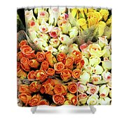 Roses 01 Shower Curtain