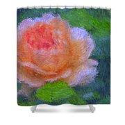 Roses Splendor Shower Curtain
