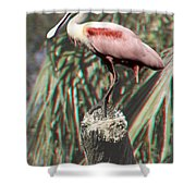 Rosey - 3d Shower Curtain