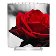 Rosey Red Shower Curtain by Kaye Menner