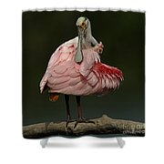 Rosiette Spoonbill Shower Curtain