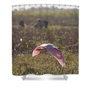 Rosy In The Field Shower Curtain