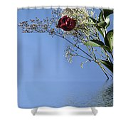 Rosy Reflection - Right Side Shower Curtain