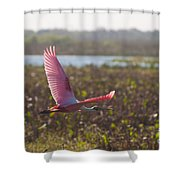 Rosy Soar Shower Curtain