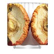 Rotten Apple Halves Shower Curtain