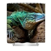 Rough Day Shower Curtain