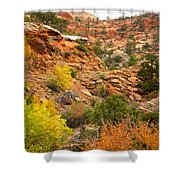 Rough Terrain In Autumn Along Zion-mount Carmel Highway In Zion Np-ut Shower Curtain