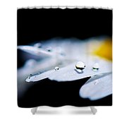 Round Drops Shower Curtain