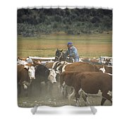Cattle Round Up Patagonia Shower Curtain