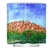 Roussillon Village Shower Curtain