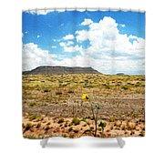 Route 66 Arizona Shower Curtain