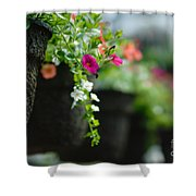 Row Of Hanging Baskets Shallow Dof Shower Curtain