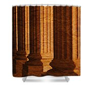 Row Of Large Columns Shower Curtain