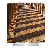 Row Of Pillars Shower Curtain