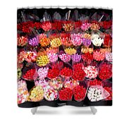 Rows Of Roses Shower Curtain
