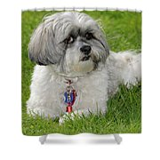 Roxey Glamour Shower Curtain