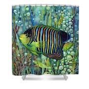Royal Angelfish Shower Curtain