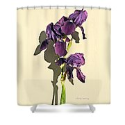 Royal Purple Iris Still Life Shower Curtain