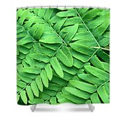 Royal Fern  Frond Detail Shower Curtain