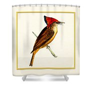 Royal Flycatcher Square Shower Curtain
