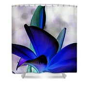 Royal Frangi Shower Curtain
