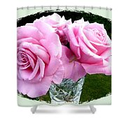 Royal Kate Roses Shower Curtain by Will Borden