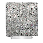 Rubies And Charcoal Shower Curtain