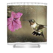 Ruby - D004190 Shower Curtain by Daniel Dempster
