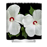 Ruby Dot Hibiscus Shower Curtain