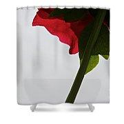 Ruby Exposure Shower Curtain