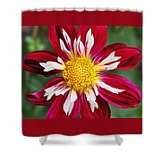 Ruby Glow Shower Curtain