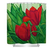 Ruby Red Tulips Shower Curtain