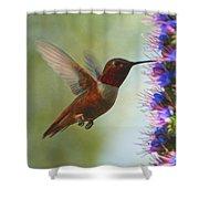 Ruby Throated Hummingbird Digital Art Shower Curtain