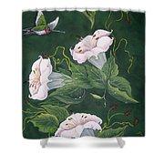 Hummingbird And Lilies Shower Curtain