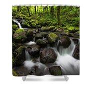 Ruckel Creek  Oregon, United States Shower Curtain