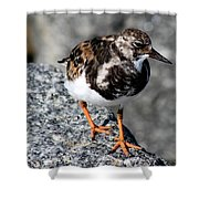Ruddy Makes For The Rocks Shower Curtain