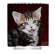 Rude Kitten Shower Curtain