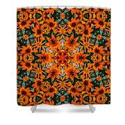 Rudi 2 Kaleidoscope Shower Curtain