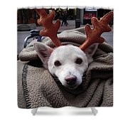Rudolph Shower Curtain