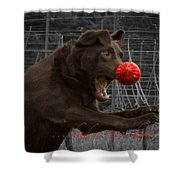 Rudolph Shower Curtain by Jean Noren