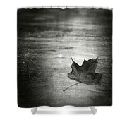 Rue Malebranche Shower Curtain by Taylan Apukovska