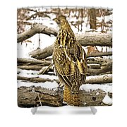 Ruffed Grouse Rear View Shower Curtain