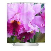 Ruffled Orchids Shower Curtain