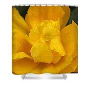 Yellow Ruffled Parrot Tulip Flower Shower Curtain